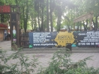 print bannere iasi