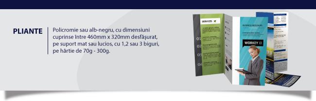 print pliante Iași