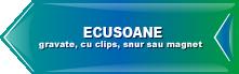 Ecusoane personalizate Iași